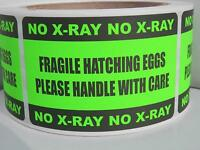 50 Hatching Eggs Fragile Handle With Care No X-ray Sticker Label Fluor Green