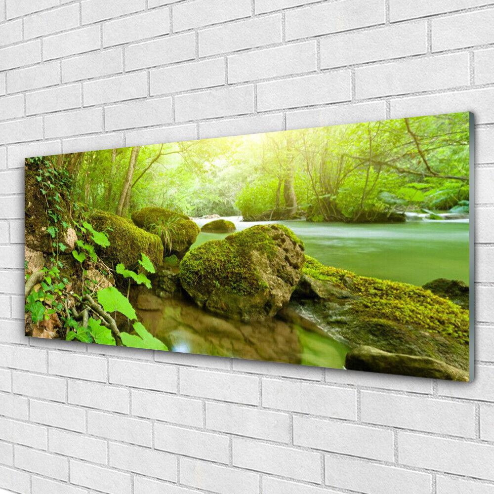 Impression sur verre Image tableaux 125x50 Nature Pierres Lac
