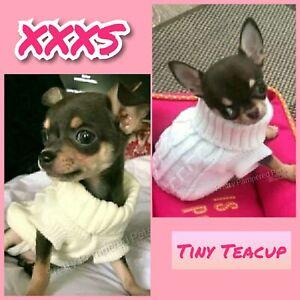 Chihuahua Clothes Xxxs Dog Coat Puppy Tiny Teacup White Pet Jumper Also Xxs Uk Ebay