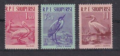 Albanien 1961 Postfrisch Minr. 630-632 Vögel Aesthetic Appearance