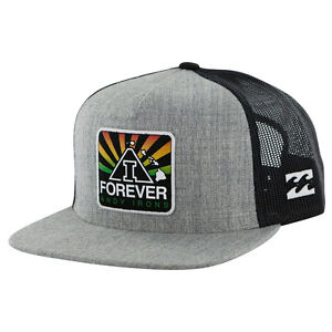 Rare-ANDY-IRONS-034-AI-FOREVER-034-New-Era-Billabong-Trucker-Hat-Gray-and-Rasta