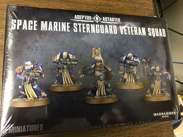Games Workshop 48-19 Space Marine Sternguard  - New In Box