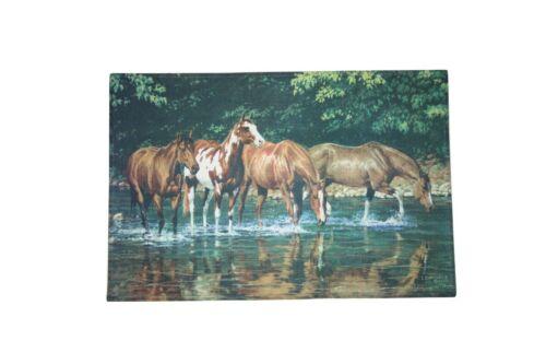 Schmutzfangmatte Eingangsmatte Fußmatte Schmutzmatte Matte Katzen Hunde Pferde