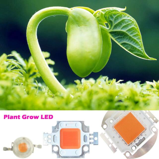 3W 10W 20W 30W 50W 100W full spectrum led chip 380~840nm EPISLEDS for plant grow