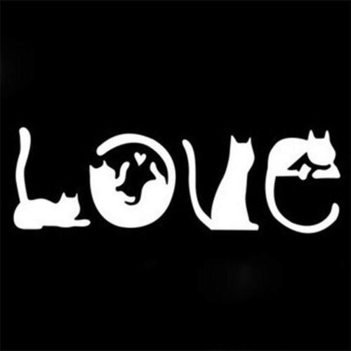 Motorcycle Cats For Laptop Ipad Car Sticker Decorative Decals Window Wall