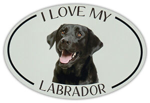 Trucks Refrigerators Dogs Oval Shaped Pet Magnets: I LOVE MY LABRADOR Cars