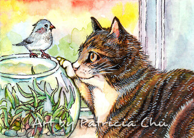 "ACEO LE Art Card Print 2.5x3.5/"" Hello Little Bird /"" Cute Cat Art by Patricia"