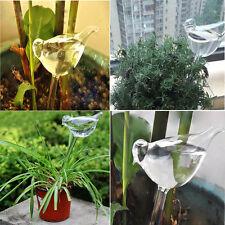 Aqua Globes Small Plant Automatic Bulbs Bird Self Watering Clear Glass Sprinkler