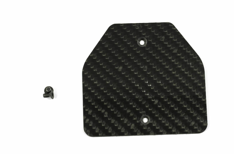FG Carbon Gewichteinsatz breit - - - 4484 01, ballasting hatch wide Gewichte Einsatz c00049