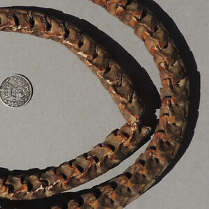 a-large-27-inch-69-cm-strand-snake-vertabrae-from-nigeria-1792