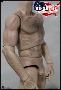 Silhouette mondiale musclé corps masculin poilu échelle 1/6 fou durable durable