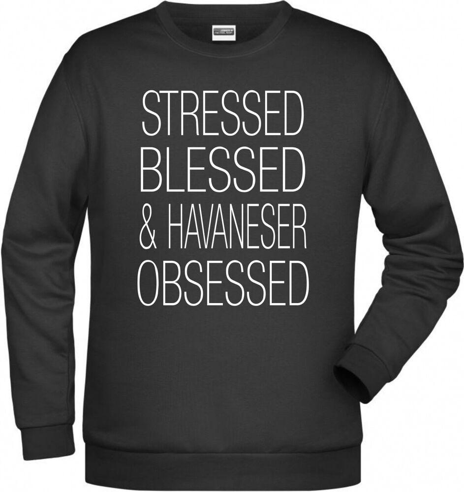 Havaneser Obsessed Femmes Sweatshirt Chiens Motif Stressed Blessed Cuba