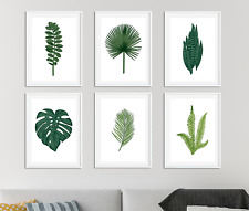 Botanical Prints / Pictures Living Room Decor Plants Leaf Palm Fern