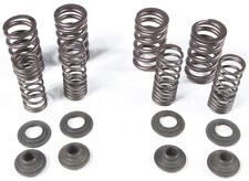 Outlaw Racing OR5380 Intake Spring Ktm 250 SX-F 2005-2007 250 EXC-F 2005-2007