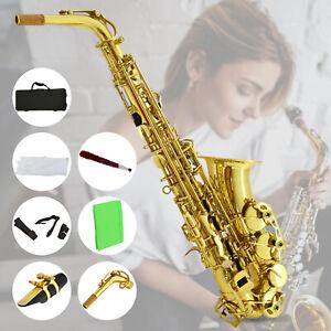 Professional-Eb-Alto-Sax-Saxophone-School-Paint-with-Case-Mouthpiece-Carekit