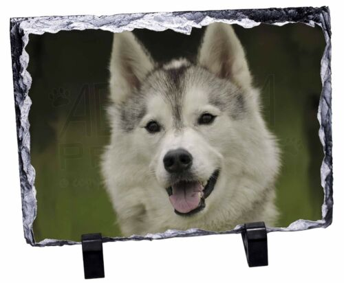 Siberian Husky Dog Photo Slate Christmas Gift Ornament AD-H65SL
