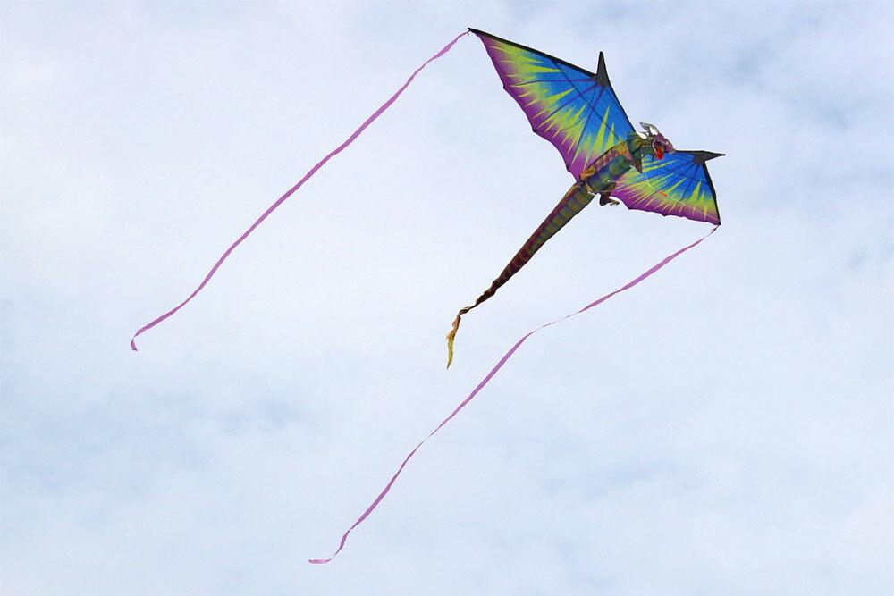 WindNSun 3D Dragon - - - 3D Drachen - Der perfekte Kinderdrachen VOM FACHHÄNDLER 37f689