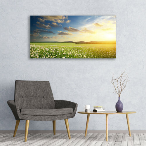 Leinwand-Bilder Wandbild Canvas Kunstdruck 120x60 Wiese Blumen Landschaft