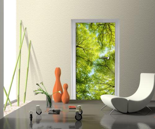 Türtapete Baumkronen Tapete Kunstdruck Türbild M0413