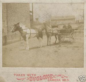 ANTIQUE-VICTORIAN-AMERICAN-CYCLONE-MAGAZINE-NO-3-RARE-CARD-PHOTO-HORSES-CHICAGO