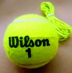 Migliori 7 Palline da tennis con elastico