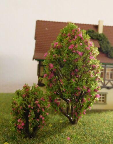 je 5 Stück 25 und 60 mm hoch 10 rosa blühende Büsche