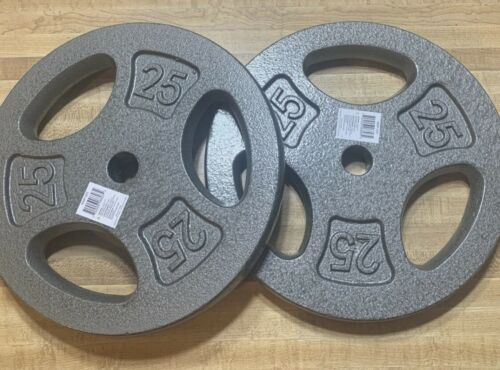 "BRAND NEW CAP 25 lb Grey Standard Grip Plates 2 Plates 1/"" Barbell Weight"