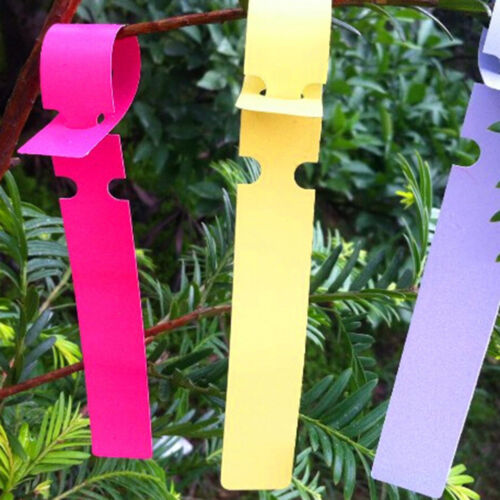 200X Plastic Plant Tree Hanging Markers Tags Nursery Seed Gardening Labels YNFK