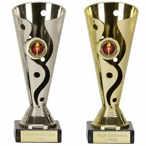 Details about Engraved Trophy Cup - Carnival Presentation, Sports Trophies  & Awards, 15-19cm