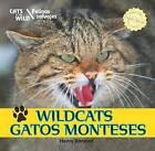 Wildcats/Gatos Monteses by Henry Randall (Hardback, 2011)
