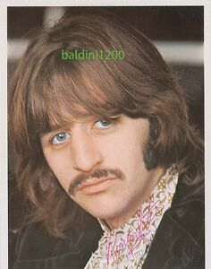 RINGO-STARR-THE-BEATLES-SIGNED-10X8-PHOTO-GREAT-STUDIO-IMAGE