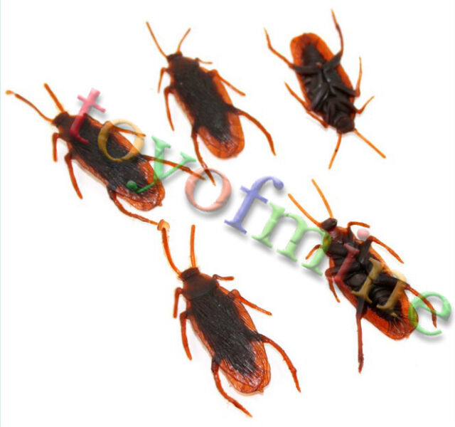 5x Fake Halloween Cockroach Practical Joke Insect Bug Toy Cockroaches NEW
