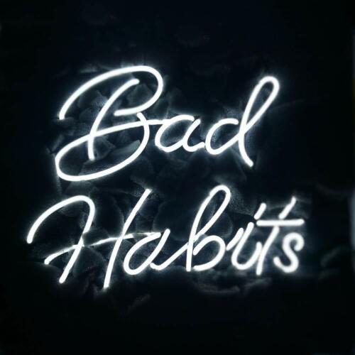"14/""x9/""Bad Habits Neon Sign Bier Bar Neonreklame Wandbehang Nachtlicht Kunstwerk"