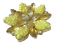 thumbnail 9 - Vintage Brooch  AB Rhinestone Yellow Iridescent Molded Glass Flower Gold Tone