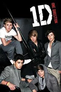 à Condition De One Direction : Portrait - Maxi Poster 61cm X 91.5cm Nouveau Et Scellé