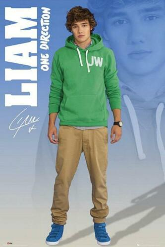 new /& sealed Liam One Direction Maxi Poster 61cm x 91.5cm