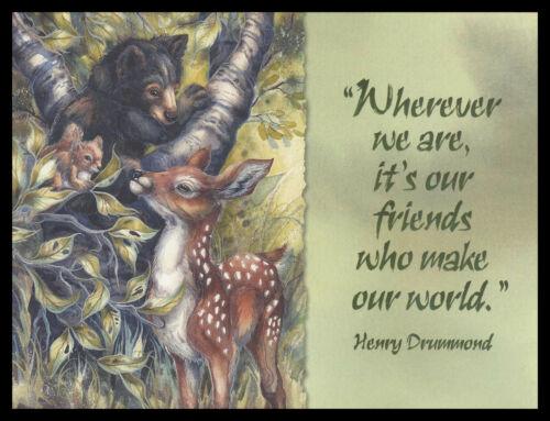 051-MSA Jody Bergsma BEAR DEER SQUIRREL Birthday Greeting Card NEW