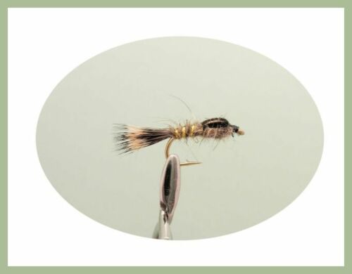 12 Pack Lièvres Oreille Nymphe Truite Mouches 3 variétés pour pêche à la mouche 10//12//14