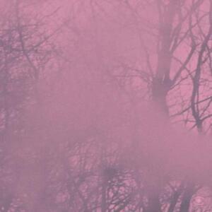 PRINS-EMANUEL-DIAGONAL-MUSIC-VINYL-LP-NEU