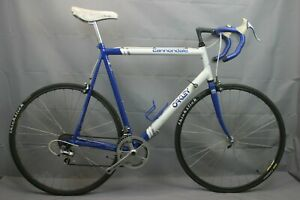 Cannondale-OAKLEY-Race-Road-Bike-XX-Large-66cm-Shimano-SLR-105-Campy-USA-Charity