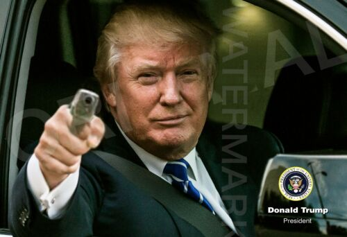 x2 Donald Trump And Gun 8.5x11 Posters - With Or Without Lamination 2