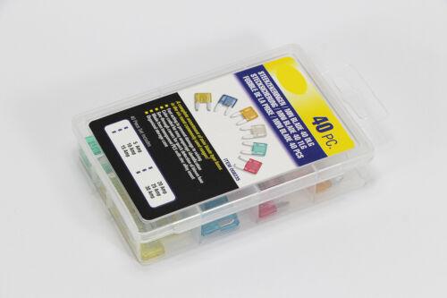 Nuevo 40 x copia de seguridad para coche mini flachstecksicherung set stecksicherung Box