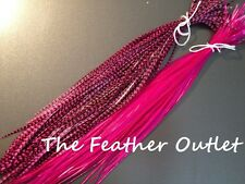 Lot 10 Grizzly Feathers Hair Extensions long thin skinny striped Real HOT PINK