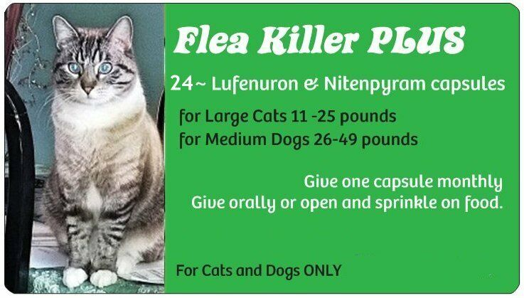 Summer Blowout Sale ~Flea Killer PLUS for Cats over 11 lbs~24 Green Monthly Caps