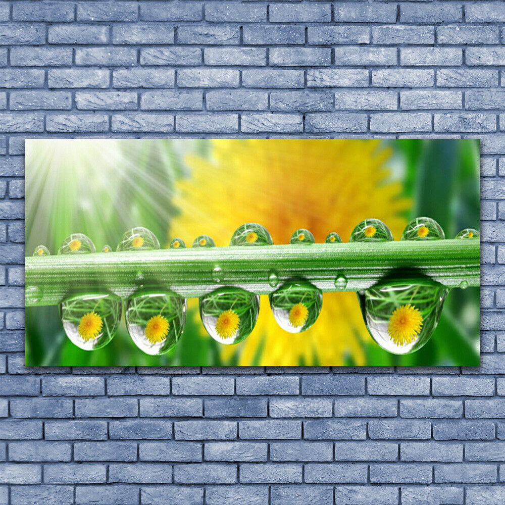 Glass print Wall art 140x70 Image Picture Stem Dew Drops Floral
