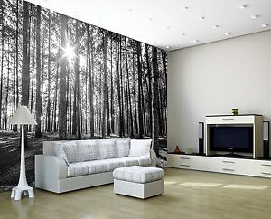 SUNNY-SPRING-FOREST-MORNING-TREES-Photo-Wallpaper-Wall-Mural-WOODLAND-DECOR