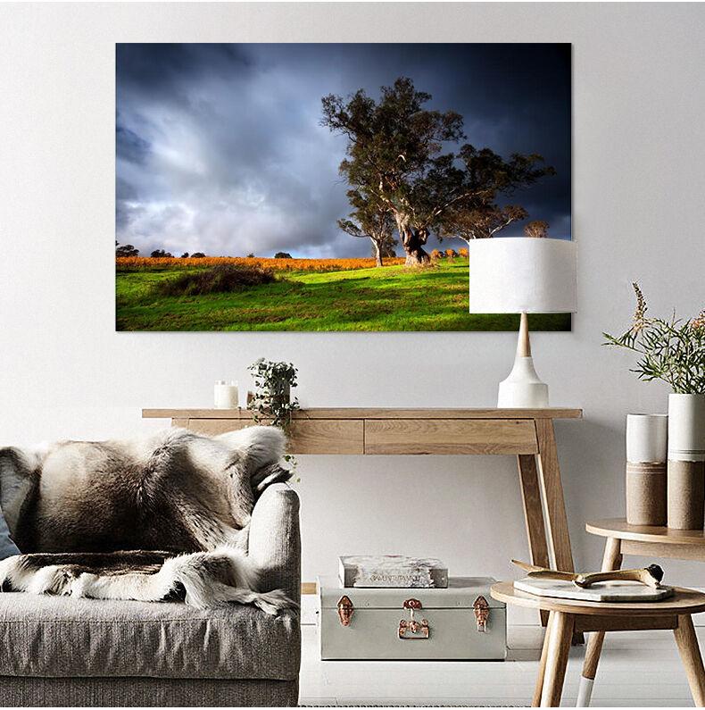 3D Lustiger Baum Himmel Wiese 8 Fototapeten Wandbild BildTapete AJSTORE DE Lemon