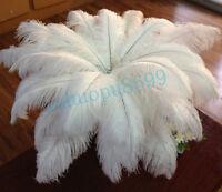 Wholesale 50pcs/100pcs white ostrich feathers wedding 12-14inches/30-35cm