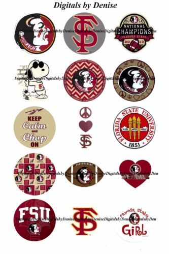 "NCAA COLLEGE BOTTLE CAP IMAGES 30 1/"" CIRCLES YOU PICK $3.45 ***FREE SHIPPING***"