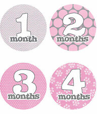 Baby Girl Monthly Stickers 12 months Just Born Gray Pink White 4 circle